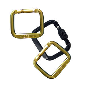 Flat Keychain Rigging Aluminium Square Shape Black Aluminum Carabiner With A Screw