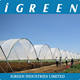 Low cost commercial greenhouse for blueberry in Chile