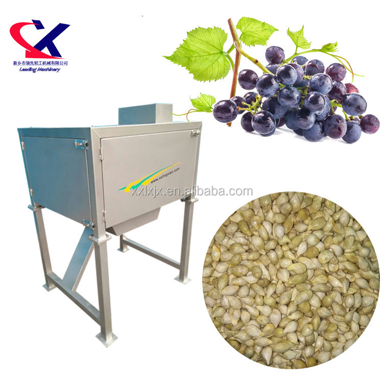 Industrial Grape Seed Separator Machine 2.5t/h Separation Machine for Grape Seed fruit seed separator for orange, grape