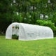 8x3m Poly Tunnel Greenhouse for sale
