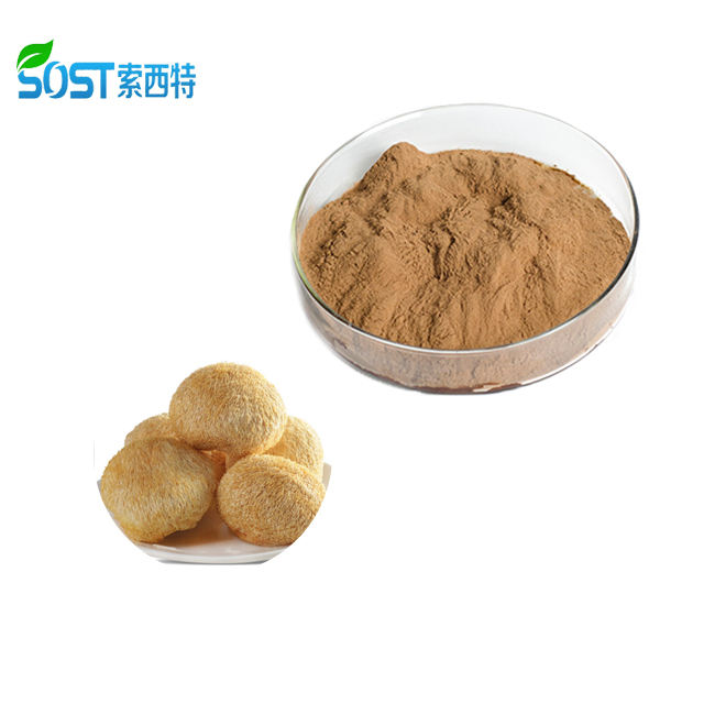 ISO Certified Manufacturer Organic Lion's Mane Mushroom Extract Powder