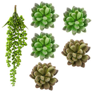 Artificial Flocking Succulent Plants For Decoration Lotus Flower And Tears of Lovers