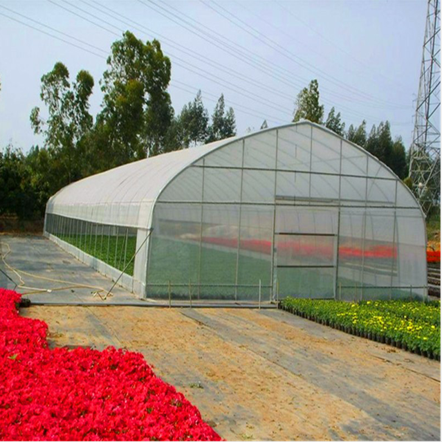 Customized High Quality High Tunnel Vegetable Greenhouse for sale