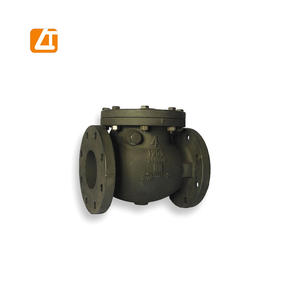 high quality cast iron swing check valve pn16
