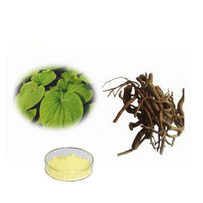 Selling Kava Kava Extract Powder 30% and 70% Kavalactones by HPLC