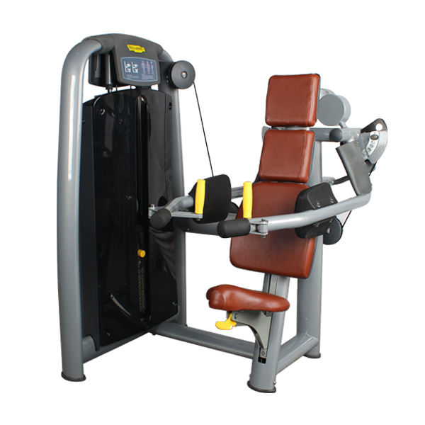 Techno brand delts machine fitness equipment wholesale commercial gym equipment