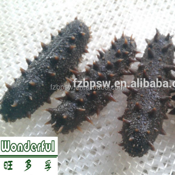 Seafood Black Dried Sea Cucumber/Sea Slug/Trepang