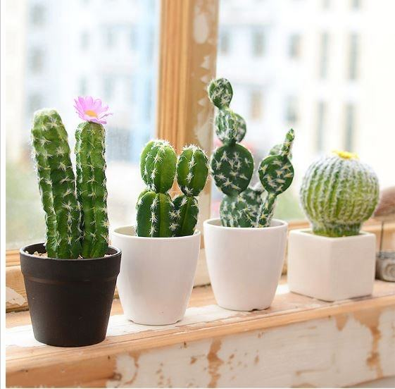 Popular europe simple style faux mini potted plants artificial cactus and succulent in pots
