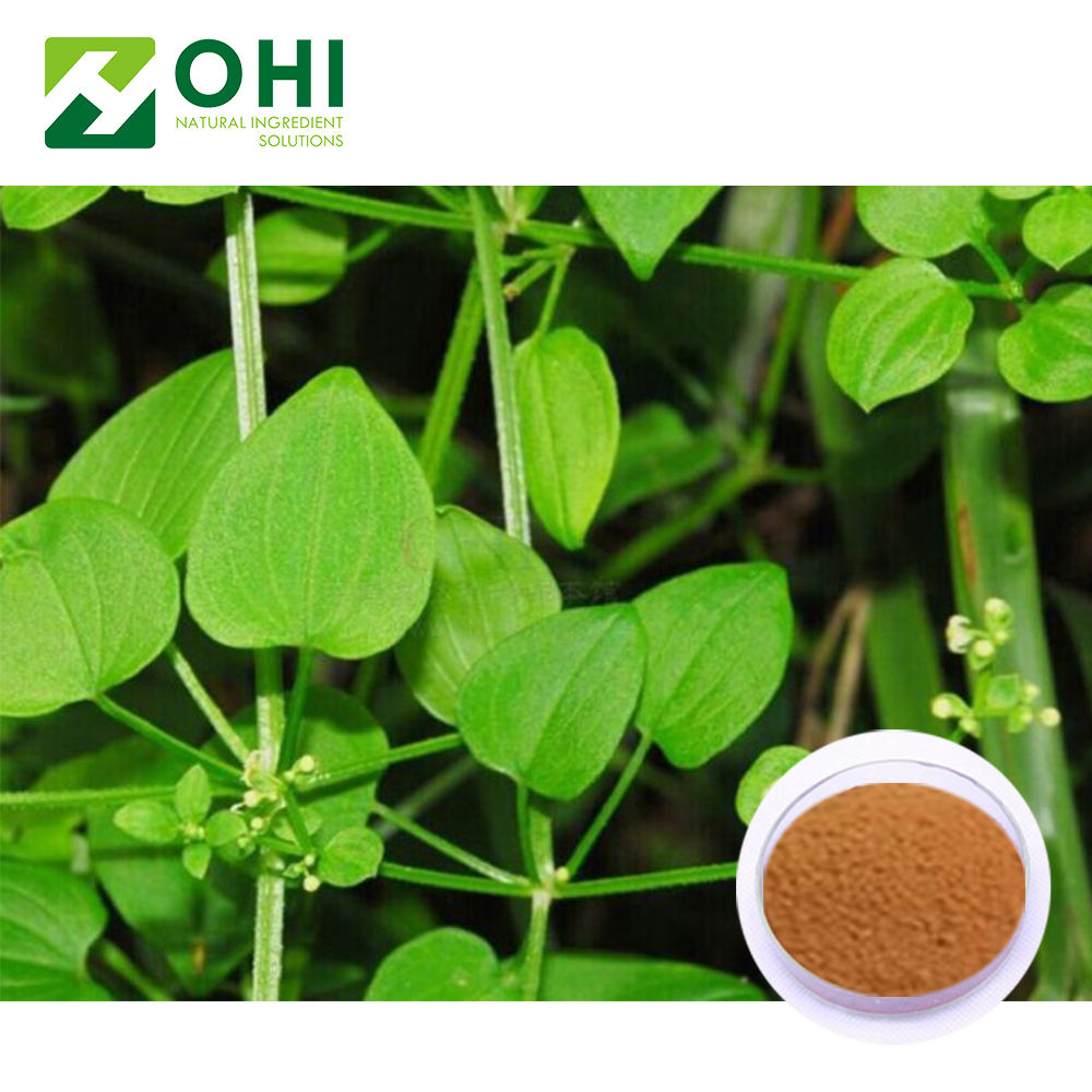 Factory supply natural India Herbal Plant Extract Madder Root Extract