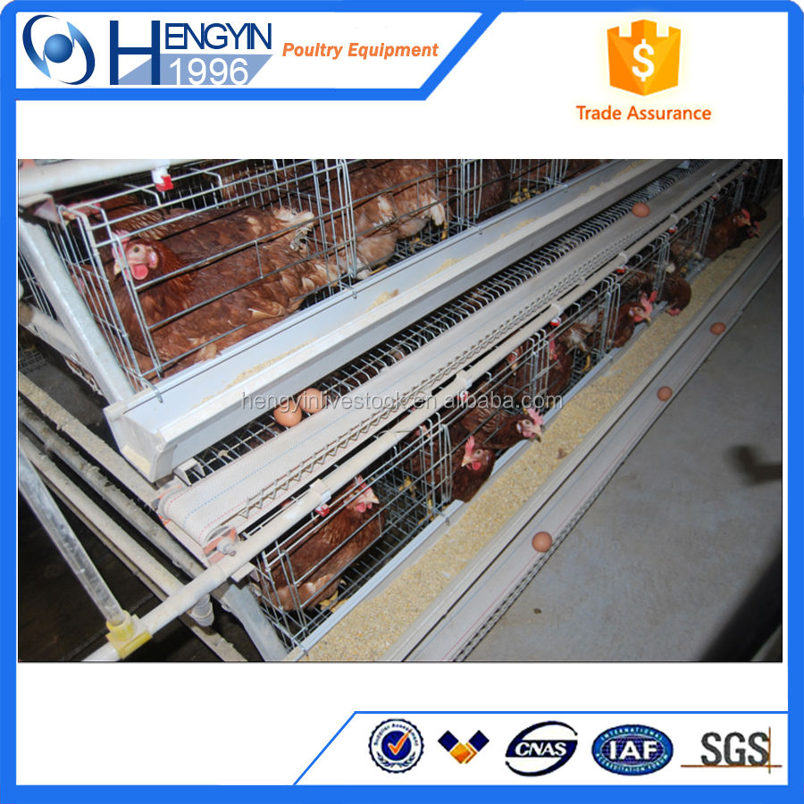 3 tier or4 layer chicken cages/egg laying hen cage/battery cage
