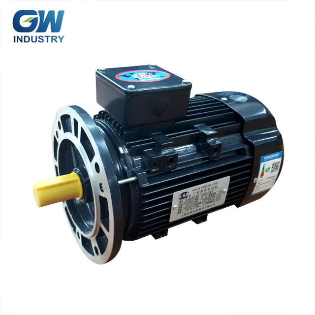 GW ELECTRIC 3 phase electric motor y90l-4