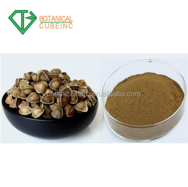 High Quality moringa seed extract powder 2018 new products food nutrition