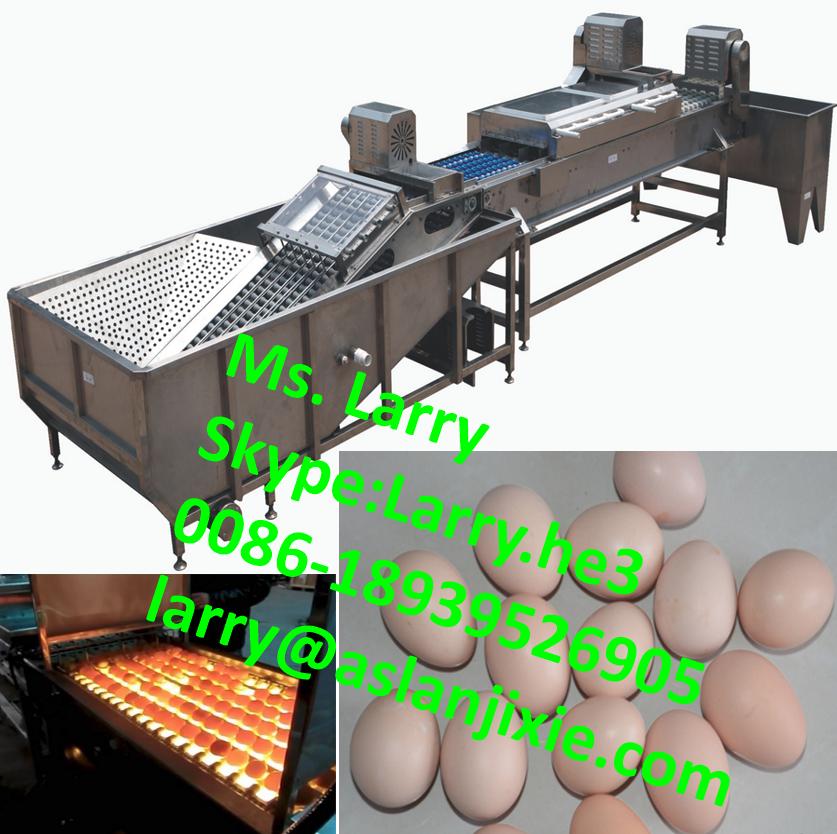 egg processing machine/egg oil spraying machine/egg cleaning candling machine