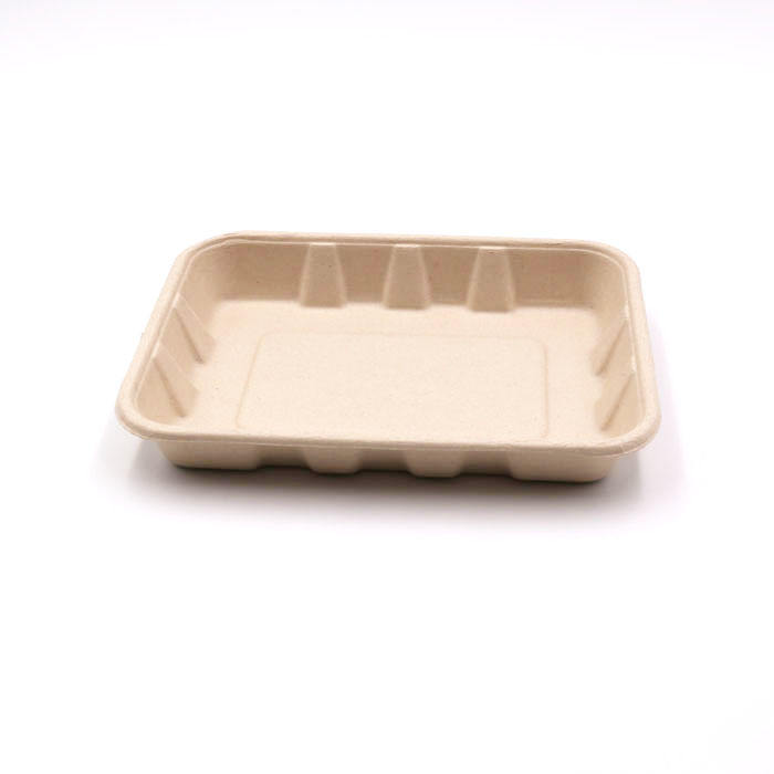 bagasse fiber pulp mould takeout food tray