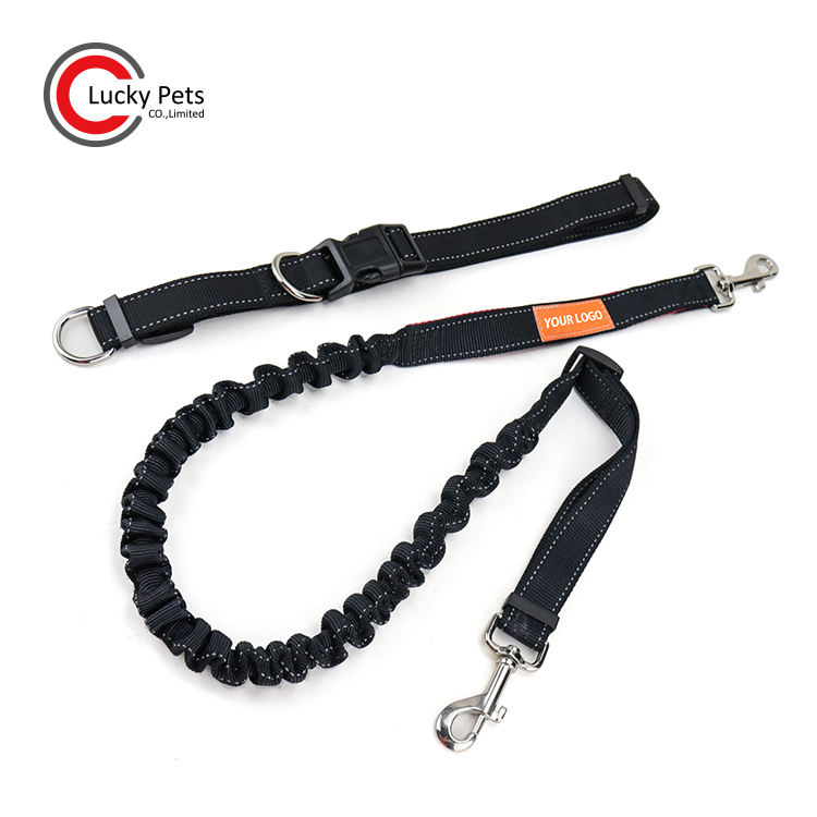 Durable Spring Bungee Retractable Dog Leash cho Chạy