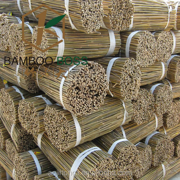 Tonkin bamboo stakes garden flower plant natural tree support