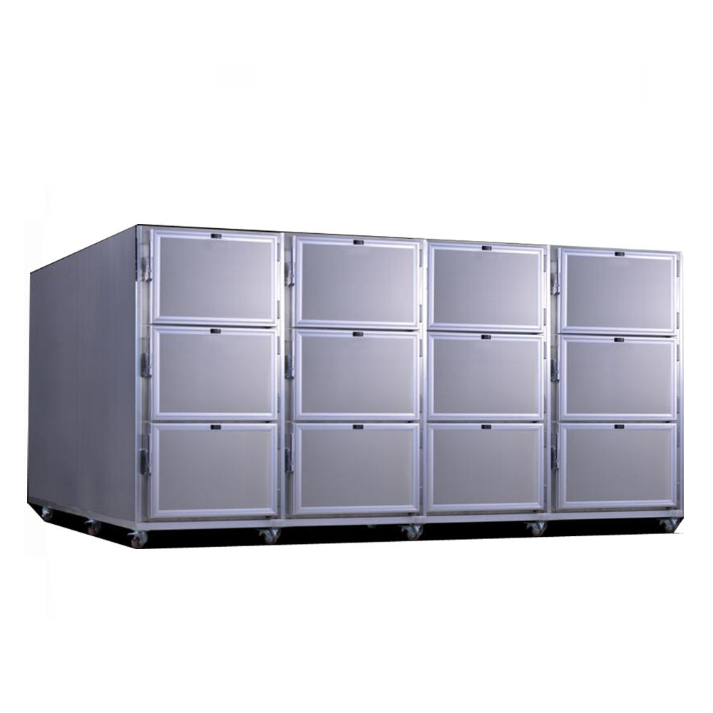MSLMR06S 1 to 6 cadavers freezer/mortuary freezer/medical freezer with stainless steel material