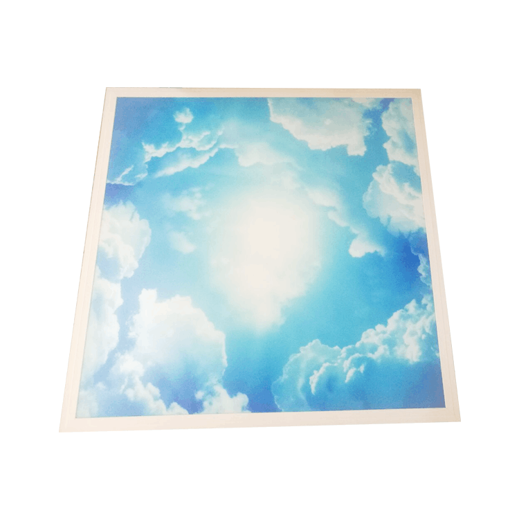 Skylight blue sky clouds recessed 600x600mm decorative led ceiling panel light,decorative plate led panel