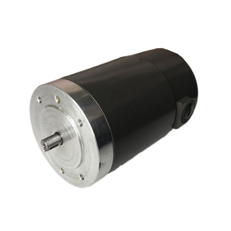 250w 500w Waterproof 12v electric brushed dc motor 5Nm