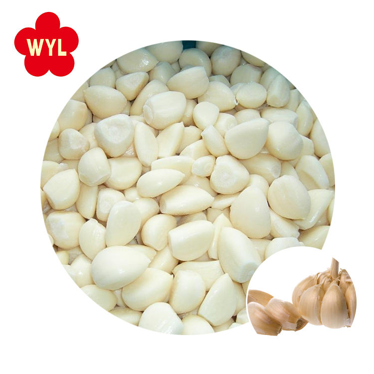 Vietnam frozen peeled garlic whole cloves supplier price