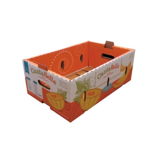 Cantaloupe Avocado Banana corrugated carton box