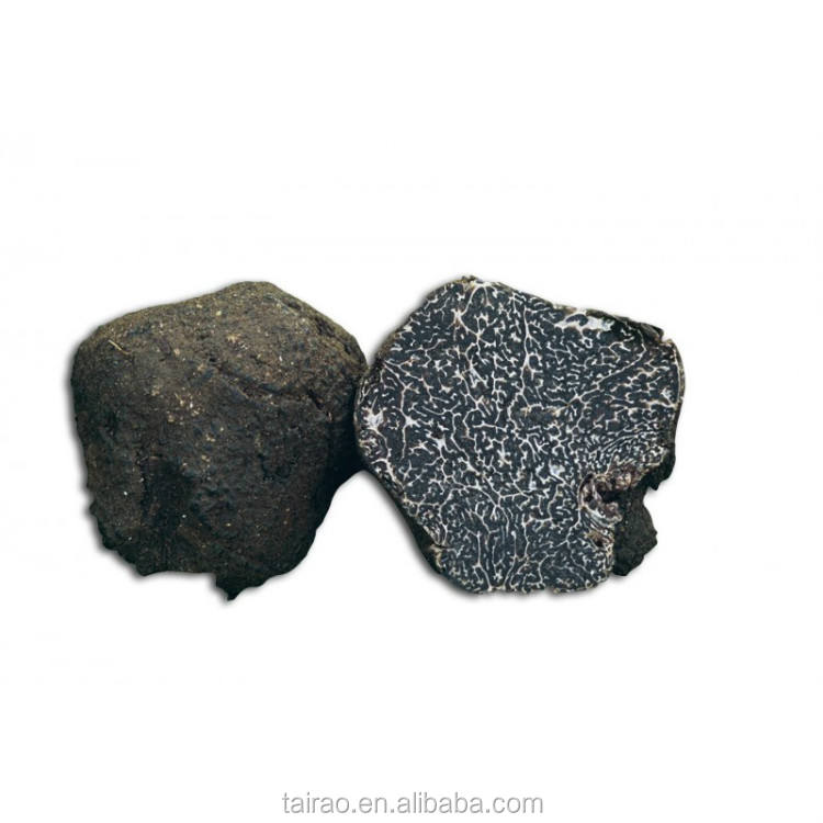 Wild mushroom prices tuber melanosporum sheet export belgian truffles