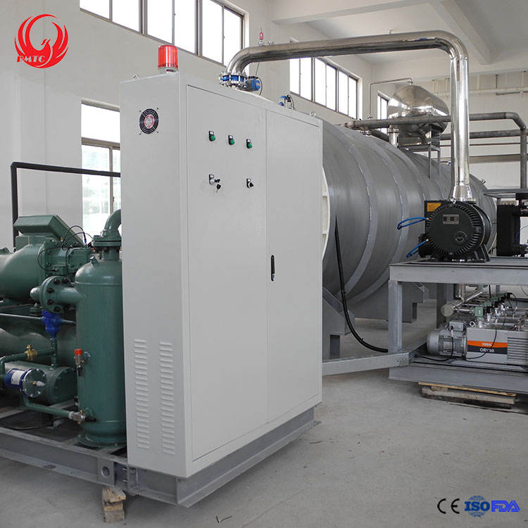 Freeze Drying Equipment Multi-function Lamellar Distance Design Industrial Fruit Lyophilizer