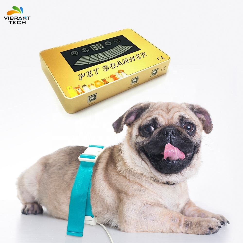 2019 LATEST high accuracity quantum resonance magnetic analyzer for Pet