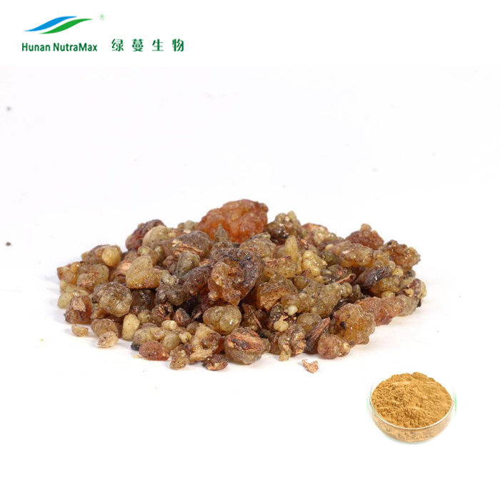 Chất lượng cao boswellia serrata chiết xuất 60% Bosewellie Axit