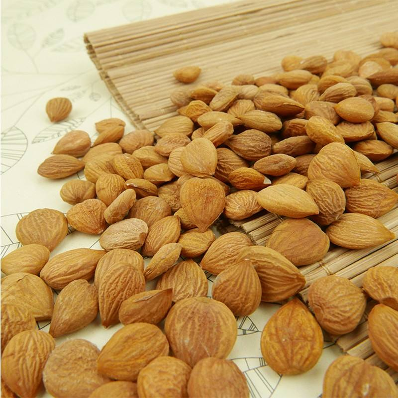 Hot Sale Sweet Bitter Apricot Kernels almonds for sale