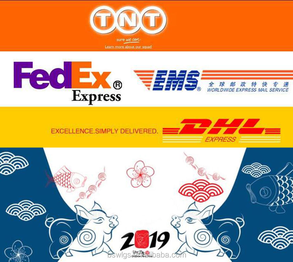 FedEx DHL UPS TNT EMS Shipping Courier Express Delivery จากจีนปาปัวนิวกินีแบตเตอรี่ cargo power bank