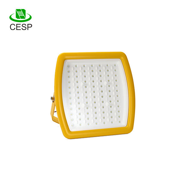 Aluminum Housing ATEX Certificated 120LM/W 20W 40W 60W 80W High Bright LED Explosion Proof Lighting