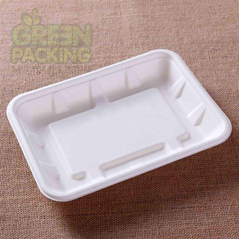disposable biodegradable certified compostable hospital party food tray made from Bagasse