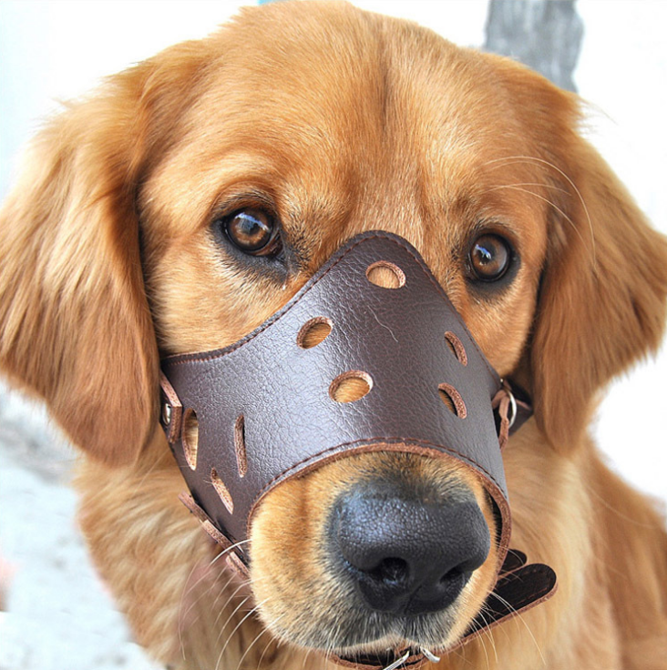 Leather Adjustable Anti Chewing Biting Dog Mask Anti Barking Pet Dog Mouth Cover