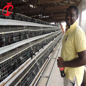 Hot selling kenya poultry farm house battery layer chicken cage