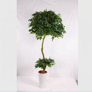 Mini artificial banyan árbol bonsai para la decoración de interiores