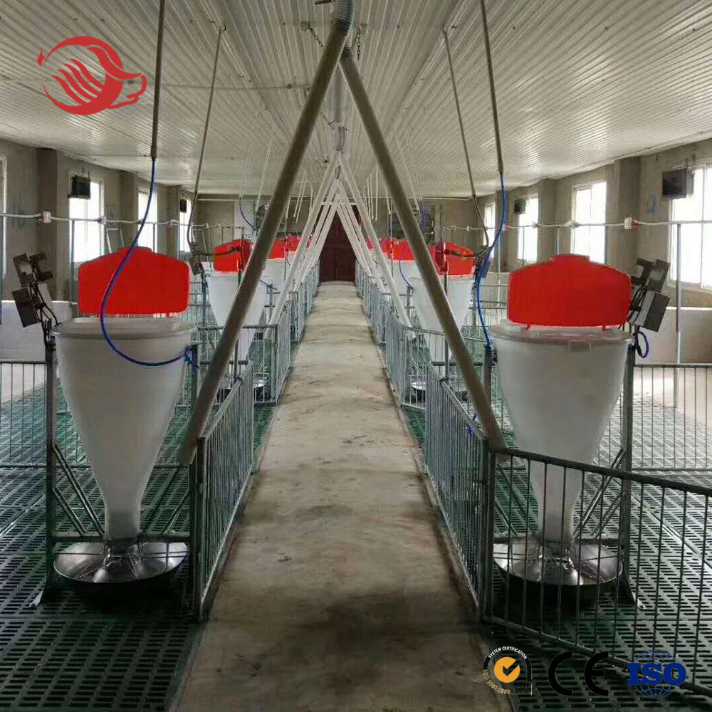 Automatic Dry Wet Feeder, Plastic Pig Feeder