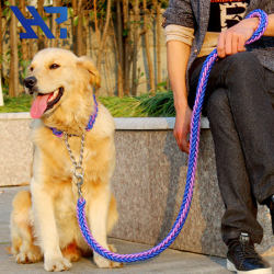 Double colors dual braided rope dog leash with braided rope iron chain collar