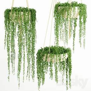 IFG green string of pearls artificial succulent plants for home hanging plants arrangements