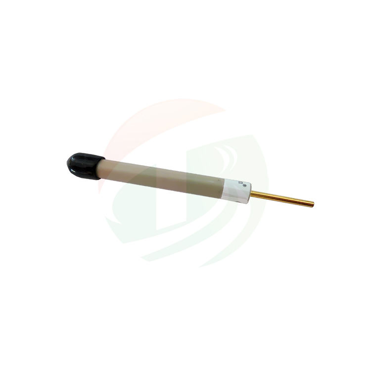 Gold/Reference AG/AgCl Platinum Working Electrode 1-6mm Diameter Customized