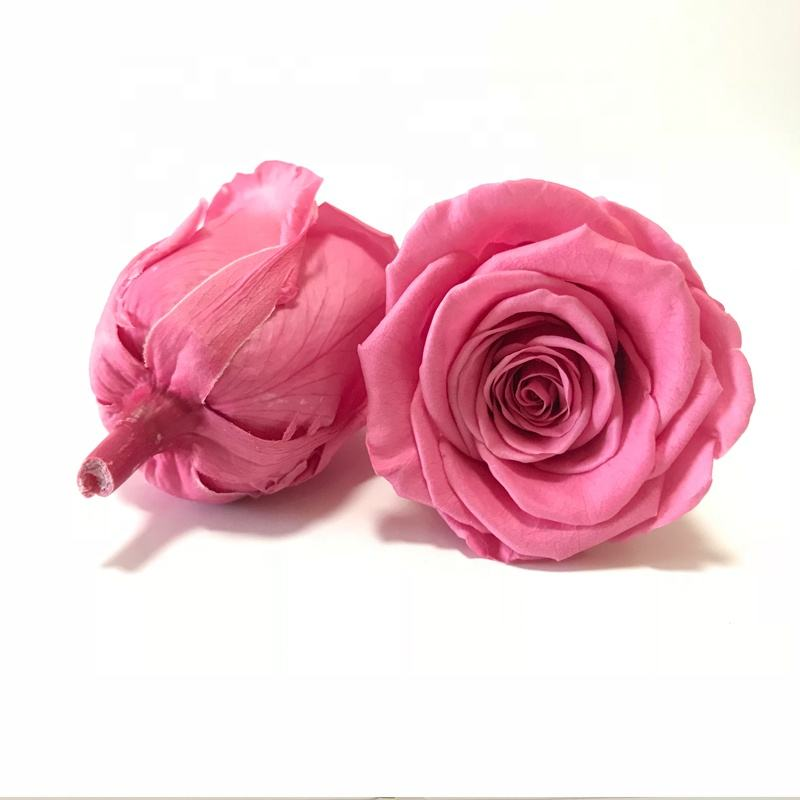 Yunnan FancyRose Florist Supplies Long Lasting Rose Hot Pink Stabilized Roses 4-5CM A Grade Quality