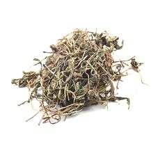 best quality dandelion  Chinese herbal medicine from dezhitang