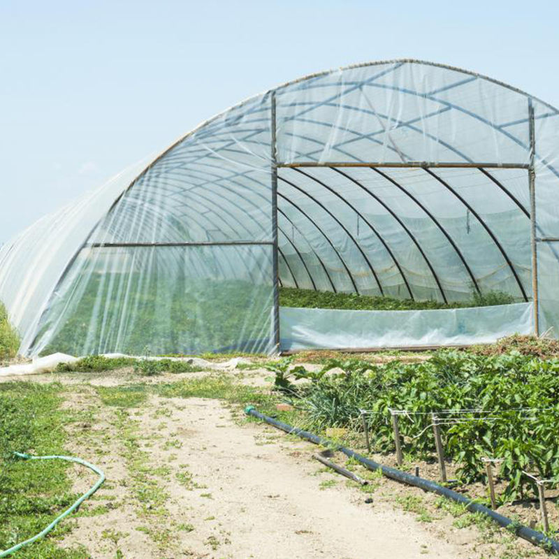 200 micron PE plastic greenhouse covering film for vegetable