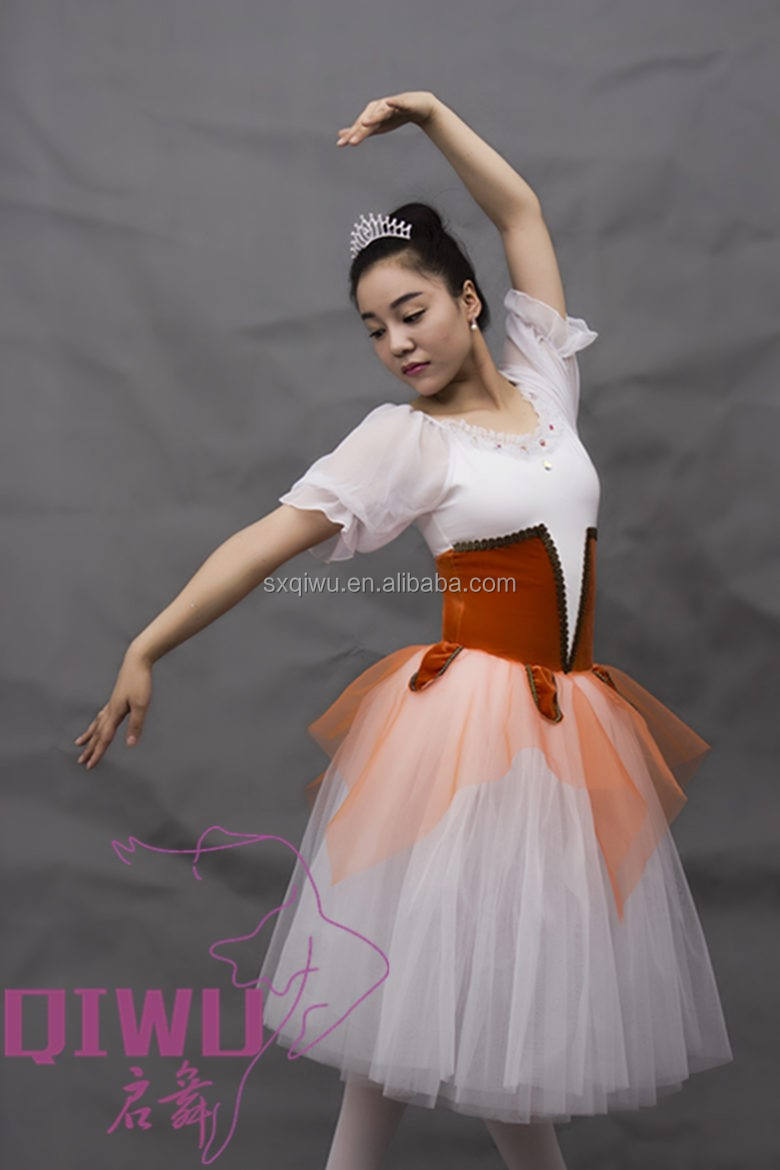 2017 New ballet tutu dress,Stage performance ballet costumes LBT-005