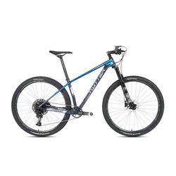High quality holographic SX-12 speed bicicleta mtb 29er carbon mountain bike