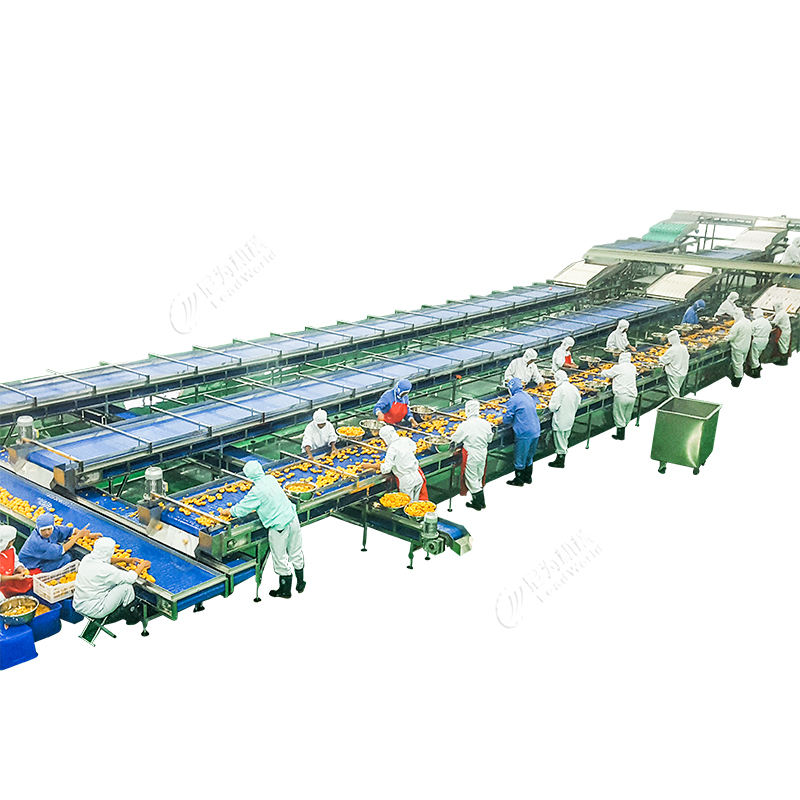 canned tuna fish process line,canned fruit production line