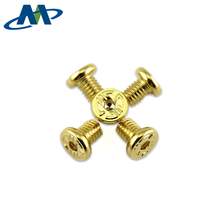 OEM Custom Logo Pattern Decorative Gold Plated Special Head Machine Screw