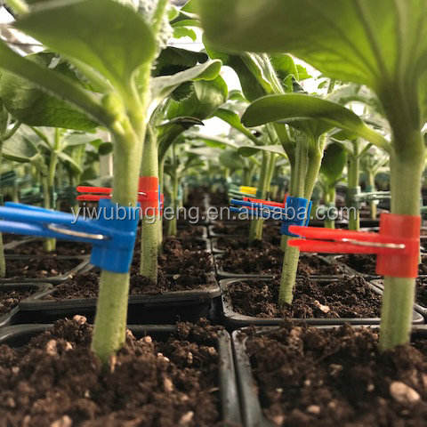 Plastic Spring watermelon Grafting Clip