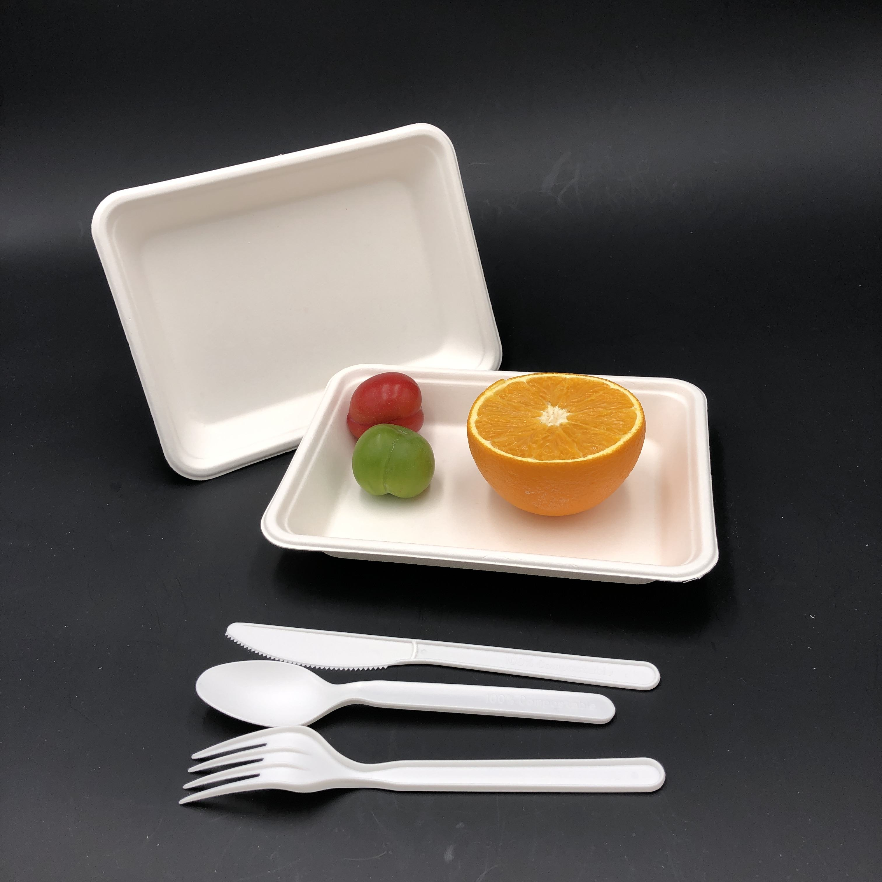 new arrival sugarcane bagasse tableware disposable biodegradable supermarket meat tray