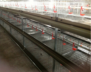 Manufacture battery H type chicken broiler cage Broiler Raising Cage